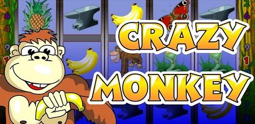 Лучшие игровые автоматы онлайн - Сумасшедшие обезьянки