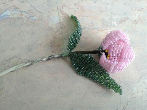 Присоединение листиков к стеблу цветка
